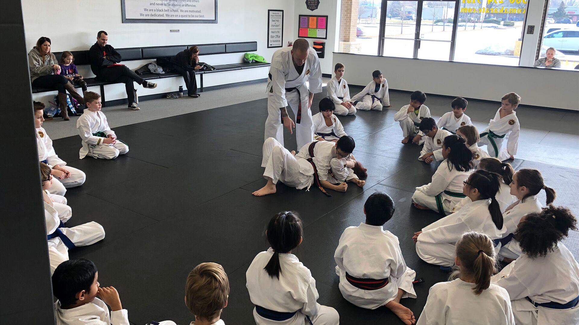 College of Martial Arts - Jiu Jitsu, Karate - Sterling Heights, MI