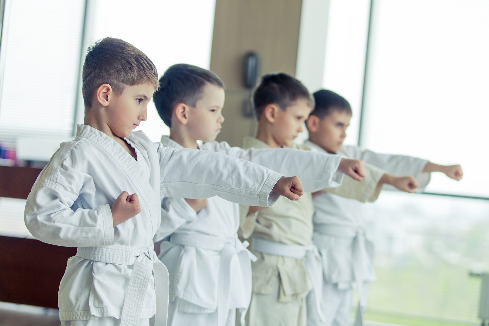 We offer Karate classes for kids and adults in Sterling Heights, Michigan